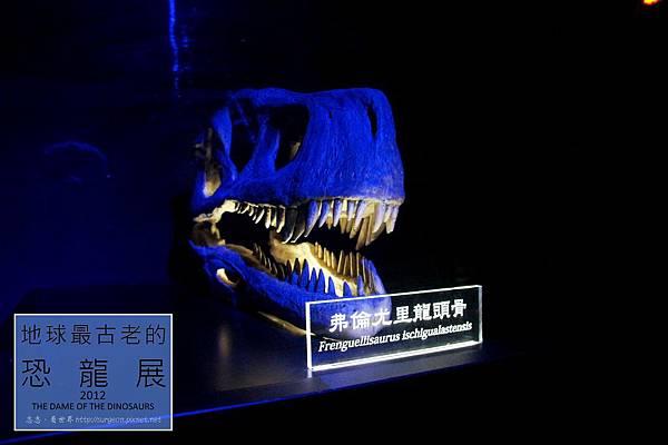 《台北》最古老的恐龍展 (28)