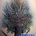 《台北》最古老的恐龍展 (29)