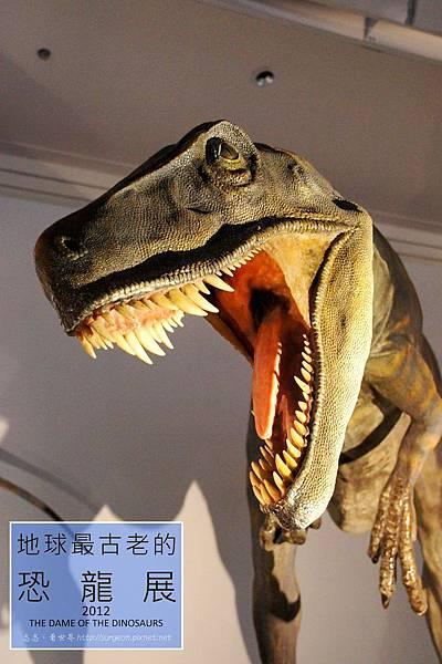《台北》最古老的恐龍展 (33)