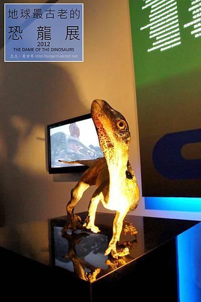 《台北》最古老的恐龍展 (35)