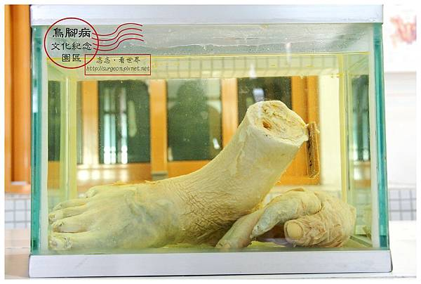 《台南》北門烏腳病文化紀念園區 (25)