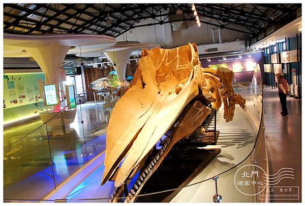 《台南》北門遊客中心 (11)