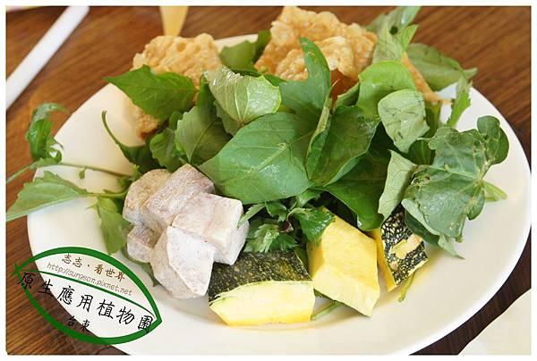 《台東》原生應用植物園 養生鍋 (6)