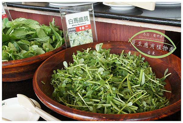 《台東》原生應用植物園 養生鍋 (8)