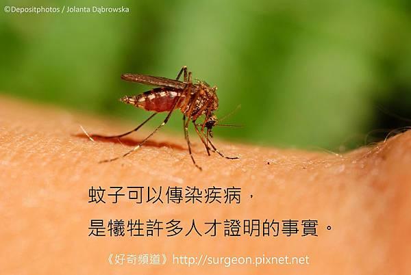 蚊子可以傳染疾病,