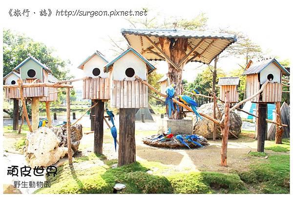 《台南》頑皮世界 動物園 (4)