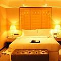2011-01 香港洲際酒店-01.jpg