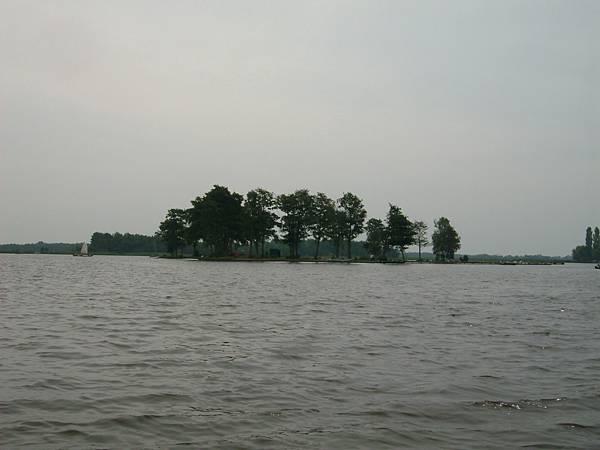 ALIM8305