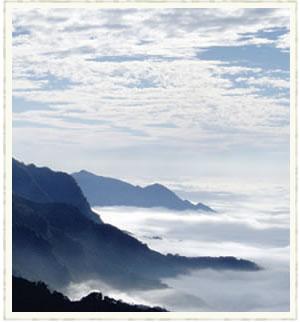 阿里山五奇之二:雲海alishan14.jpg