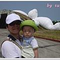 桃園地景P1360661.JPG