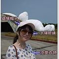 桃園地景P1360697.JPG