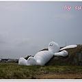 桃園地景P1360712.JPG