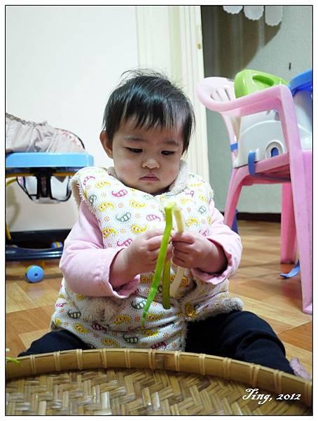 雖然基隆的蔥比較瘦小,但小雪球還是愛蔥!