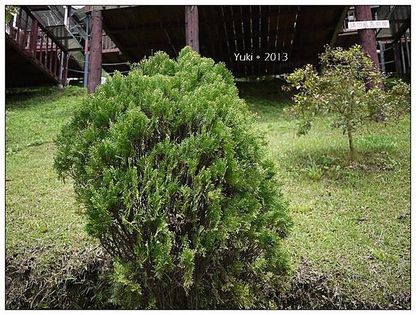 20130406-07櫻花谷露營 (25)
