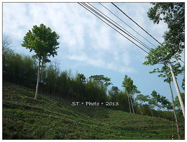 20130406-07櫻花谷露營 (69)