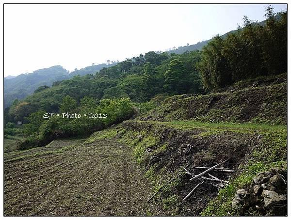20130406-07櫻花谷露營 (66)