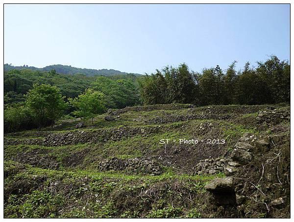 20130406-07櫻花谷露營 (67)