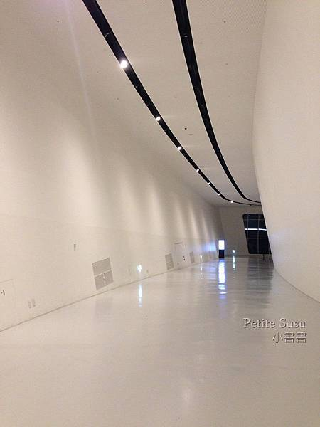 SUIMG_1322_2