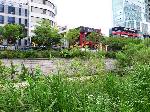 2012_8_24韓國首爾素食-清溪川-廣藏市場-樂天超市12