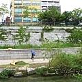 2012_8_24韓國首爾素食-清溪川-廣藏市場-樂天超市17