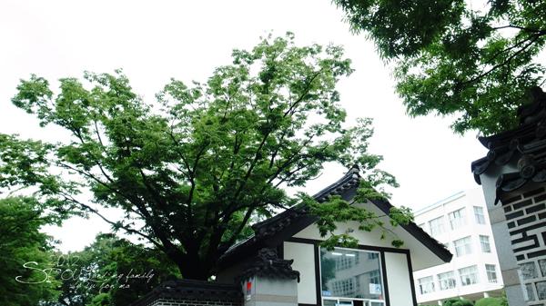 2012_8_25三清洞-cafe yung05