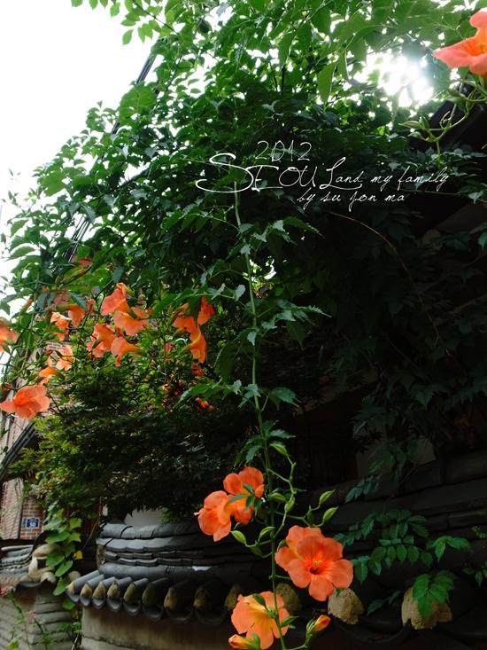 2012_8_25北村-貓頭鷹博物館-曹溪寺22