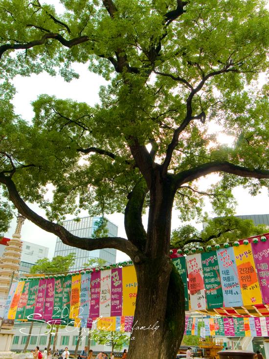2012_8_25北村-貓頭鷹博物館-曹溪寺47