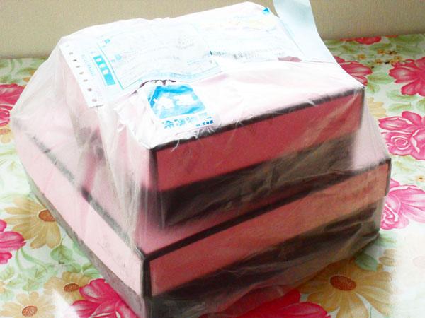 0908-巧克力戚風&雪藏檸檬乳酪蛋糕05.jpg