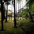 世界遺產 苔寺(西芳寺)