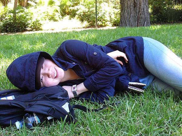 in Fitzory Garden