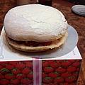佳樂草莓波士頓派-1