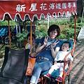 20090418-新屋花海 (19).jpg