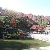 韓國 039