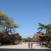 韓國 009