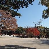 韓國 122
