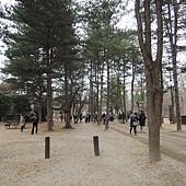 韓國 271