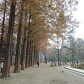 韓國 279