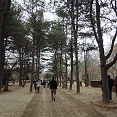 韓國 268