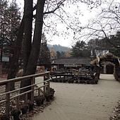 韓國 288