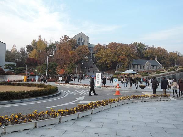 韓國 365