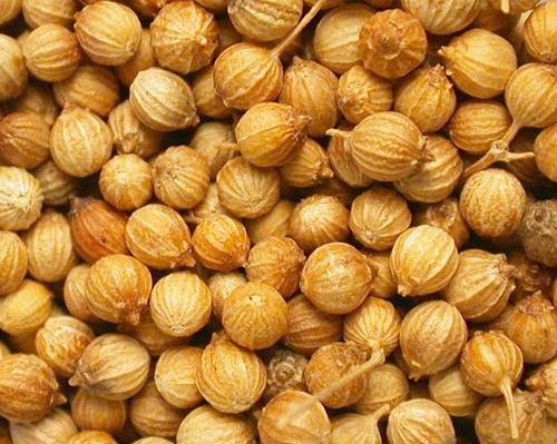 coriander-seeds__76945_zoom