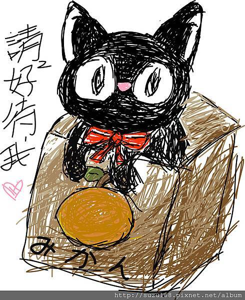 流浪小黑貓