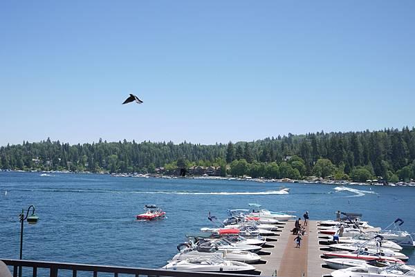 這裡是人工湖