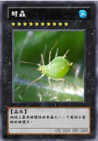 蚜蟲 (2).jpeg