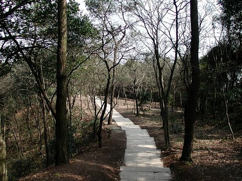 020217_06鳳凰山步道