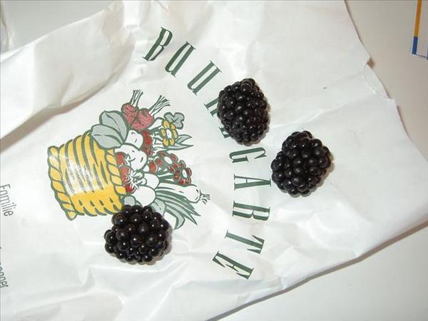 76_剛才買的漿果