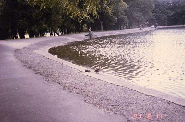 19910811-01.jpg