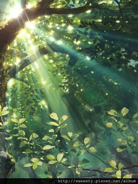 sunlight through leaves.jpg