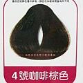 4號咖啡棕色.jpg