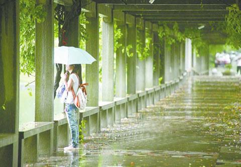 0520梅雨.jpg
